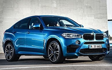 Ver mas info sobre el modelo BMW X6