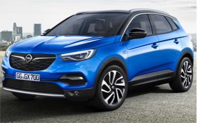 Ver mas info sobre el modelo Opel Grandland X