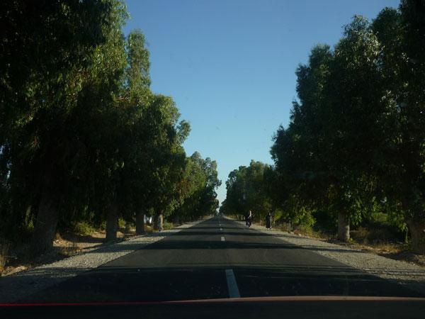 Marruecos. Carretera Marruecos. Poca visibilidad.