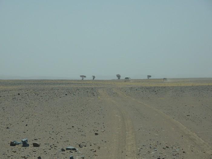 Paisaje amplio. Marruecos.