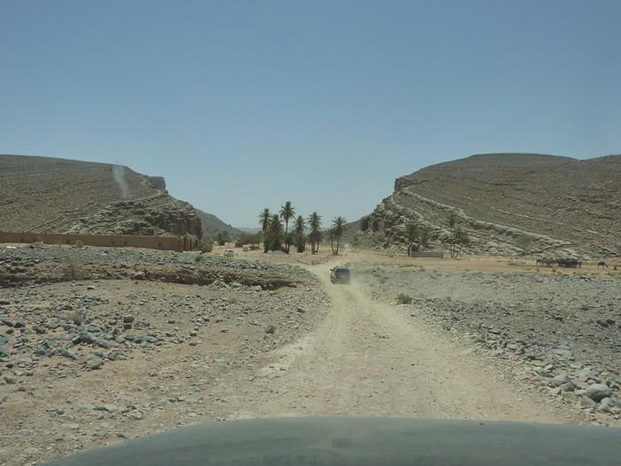 Marruecos. Desierto y oasis.
