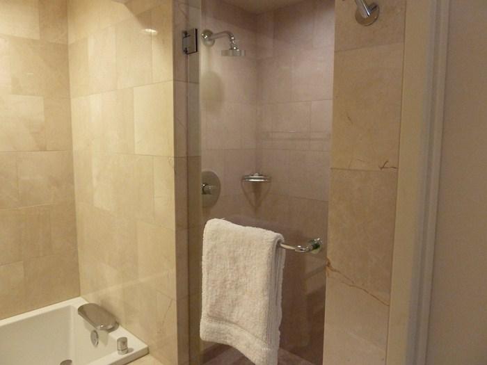 Ducha, shower. Motor City Hotel. Detroit