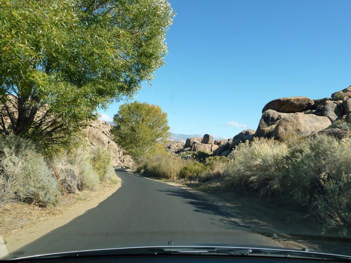Lone Pine. California. Carretera con árboles