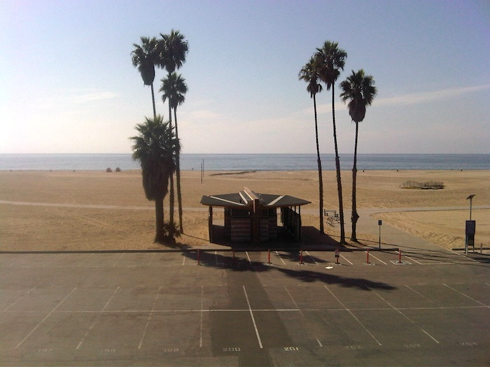 Palmeras en la playa de Santa Mónica