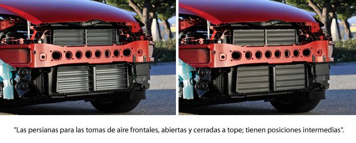 Ford Focus 2.0-TDCi 163 CV Titanium. Parrilla