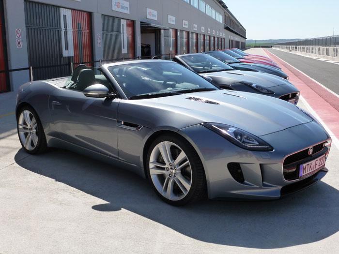 ¡Felicidades, Jaguar!