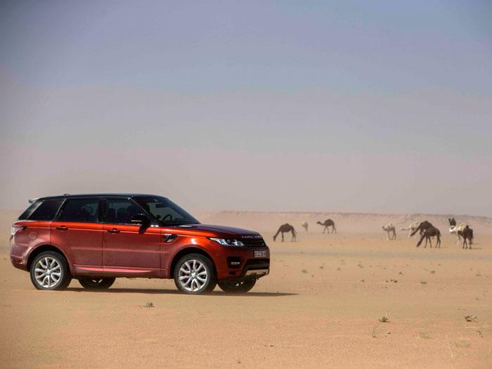 El Land Rover Range Rover Sport junto a dromedarios en el desierto