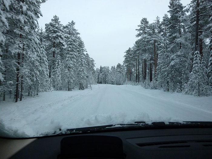 Auroras77 Día8. Nieve y nieve.