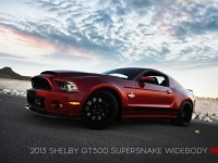 2013-shelby-gt500-super-snake-widebody_100416284_l