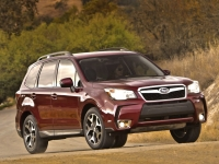 Forester_1