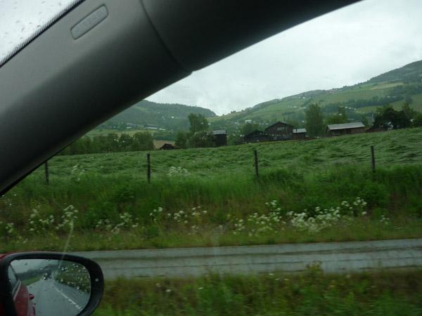 Noruega. Paisaje Verde