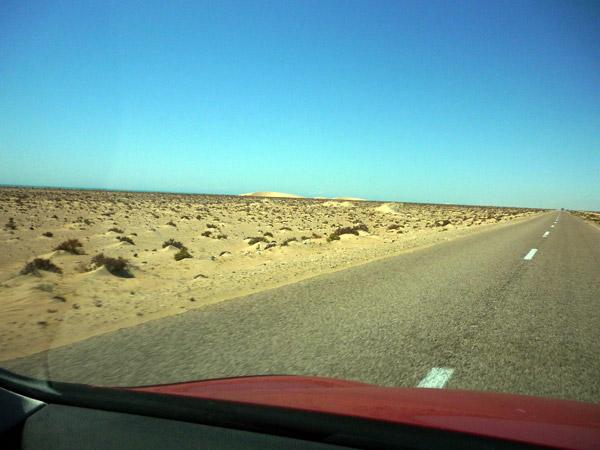 Sahara occidental. Paisaje 1.