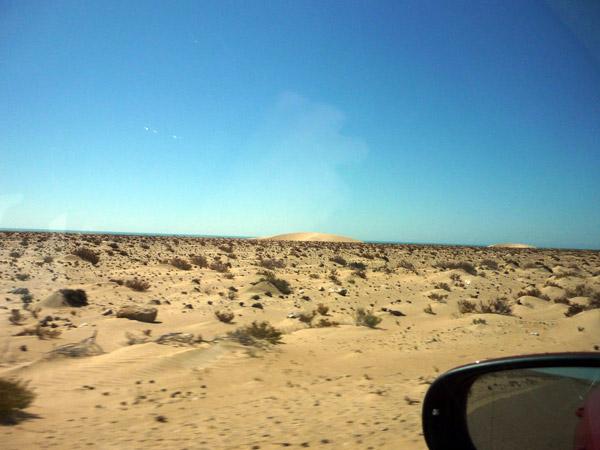 Sahara occidental. Paisaje 2.