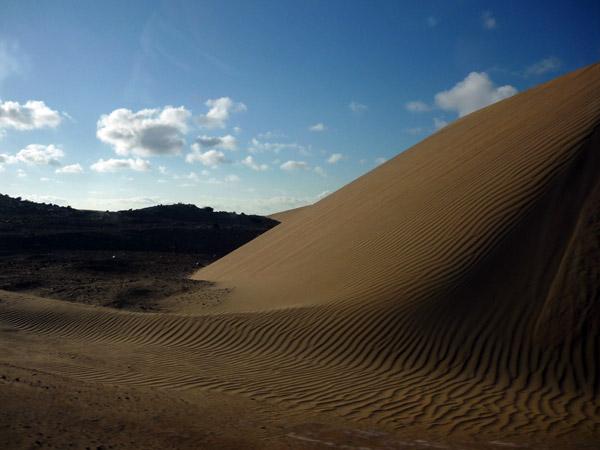 Sahara occidental. Dunas 1.