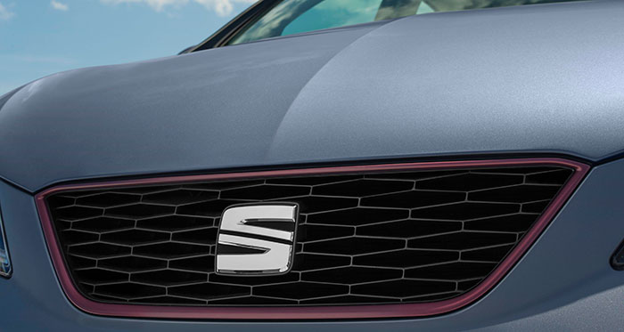 El color del junquillo anodizado que enmarca la parrilla sirve para distinguir los distintos acabados, además de las variantes que utilizan grafía, como FR, Connect, Ecomotive o Cupra.