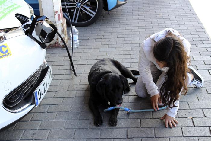 23-Bilbao Rallye- Visita el Perro