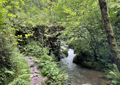 Molin Ullina. Rio Profundo. Asturias