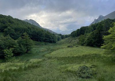 Fuente La Nalona. Cuenca del Nalón
