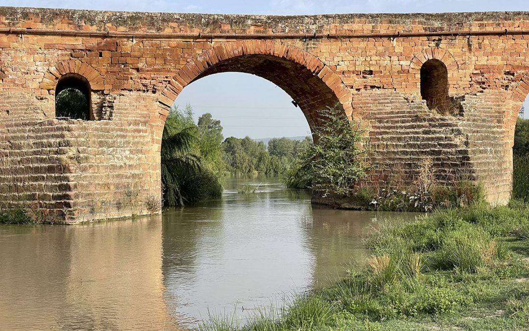 Dos puentes sobre el Guadalquivir